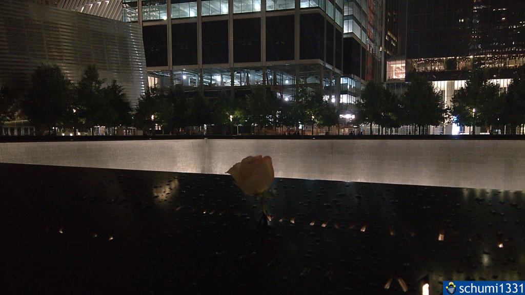 Eine Rose im südlichen Memorial